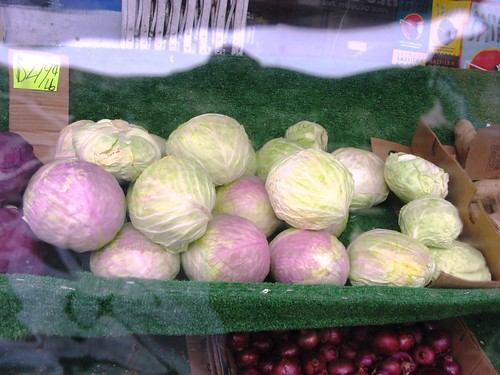 Bay Ridge Cabbages