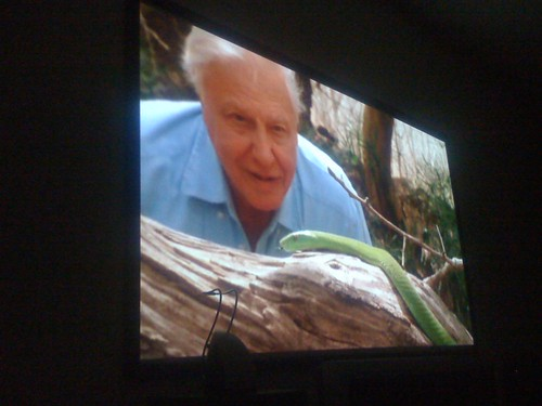 "david attenborough aka ""god"""