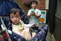 新竹市立動物園12
