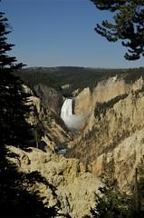 Yellowstone Canyon - Artist Point 1