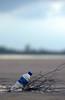 Over-use of a Fragile Resource (DSC7974) (Fadzly @ Shutterhack) Tags: sky cloud beach d50 bottle sand nikon bokeh malaysia terengganu mys mineralwater narrowdof kualaterengganu merang deadbranches setiu shutterhack