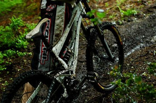 Wet and Muddy