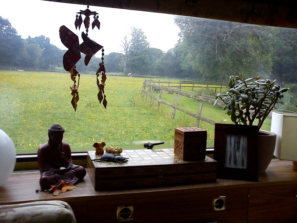 the view from my caravan window