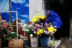 flower seller (inania) Tags: street flowers urban hk color colour hongkong flowerseller