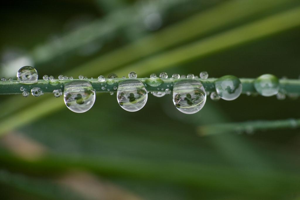 waterdrops-9