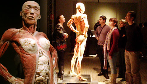 BODIES - The Exhibition en Madrid