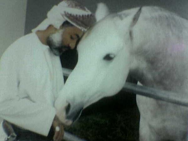 الخيول العربية الاصيلة 2089690620_cab08559d4_o