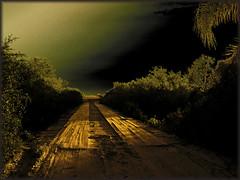 On my way back home (itala2007) Tags: bridge light nature path contest explore chapeau soe gbr ogm themoulinrouge fpc firstquality 2000views imagepoetry fivestarsgallery abigfave seeninexplore platinumphoto anawesomeshot flickrplatinum infinestyle diamondclassphotographer flickrdiamond megashot yourbestshot theunforgettablepictures newacademy overtheexcellence proudshopper thegardenofzen theroadtoheaven thegoldendreams itala2007 dragongoldaward bestminimalshot explorewinnersoftheworld alemdagqualityonlyclub damniwish ljomicomp6 flickrlovers magicdonkeysbest davincitouch atqueartificia oraclex amongstthethorns wonthirdplaceonmasterphotographercontest1 goldenart jalaspagesmasterpieces dragondaggerphot imagesforthelittleprince magicunicornverybest obramaestra