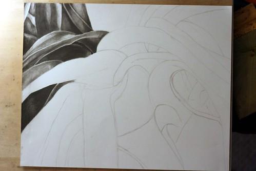 Pencil drawing in progress.
