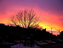Dawn's Colors B - Ottawa 01 08 (Mikey G Ottawa) Tags: sky nature sunrise skyscape dawn ottawa streetphotography om edit mikeygottawa anawesomeshot graphicedit