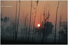 Caged Sun (eklevaya) Tags: picturepages ysplix freenature yourpreferredpicture skiescloudsandsun naturethroughthelens