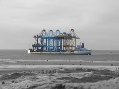Edit of a earlier Zhen Hua picture (sjoerd_reverda) Tags: