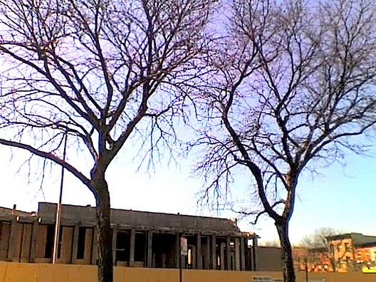 BlueSkies 340 Court