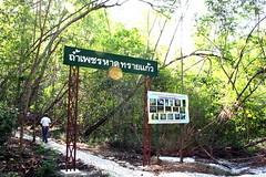 pet cave thailand07