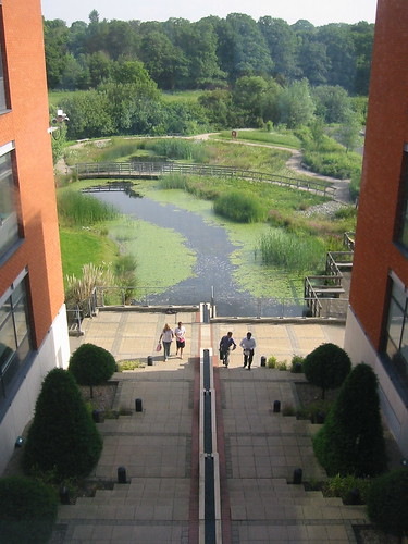 TUI Pond from above