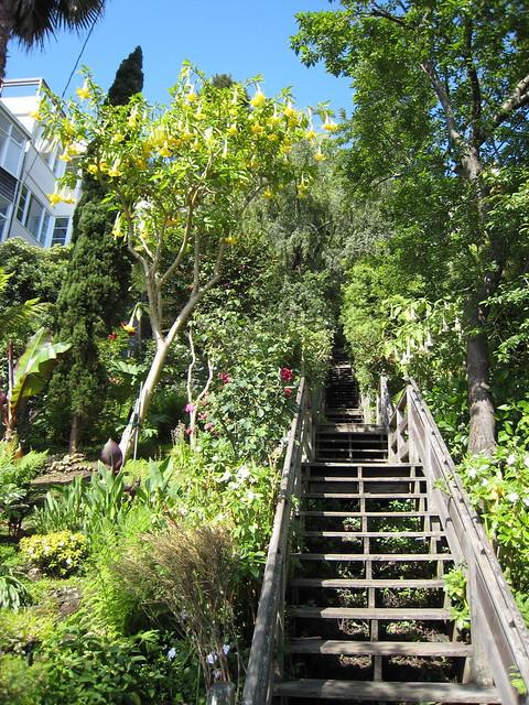 Filbert Street Steps