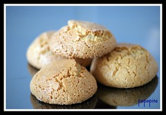 Amaretti Biscuits (papapino) Tags: coffee sony centre group center learning biscuits alpha dslr a200 foodanddrink flickrtoday beginnersgroup flickrphotosharing sonyalphalearningcenter sonyalphalearningcentre sonyalphaclub sonyalphadslra200pool nikond90winnersannounced