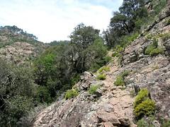 Sentier de la Lonca entre Casa Infurcata et le gué sous les Cascioni