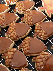 acorn cookies (nikkicookiebaker) Tags: brown fall cookies acorn decorated autumncookies