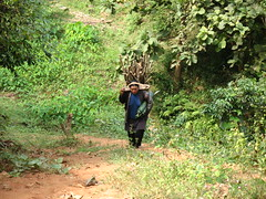 IMG_0705 (ashleysales) Tags: trek thailand hilltribe