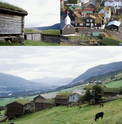 Scandanavian Vernacular Green Roofs