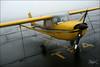 Yellow Plane in Fog