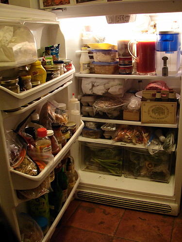 holiday fridge