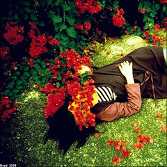 Time for poems !! (Twiggy Tu) Tags: flowers red green 120 film me girl beautiful holga lomo colorful taiwan twiggy photobybrad aplusphoto lomopeoplelomolife timeforpoem