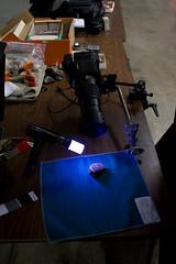 Macro Setup