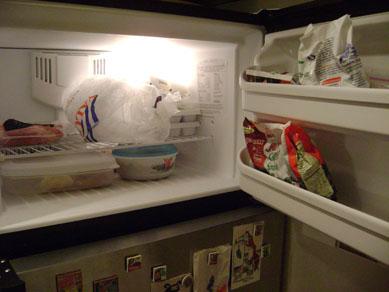 after: freezer