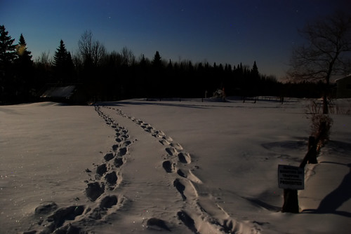moonlit snowshoe for two by paul+photos=moody.