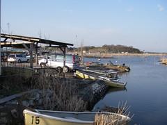 印旛沼は大減水