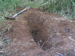 2368693316_c02f34566a_m - Cadaver of a 46 yrs. Old Widow Found After Burried in 5 days - Philippine Business News