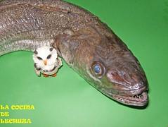 Merluza hervida-cruda
