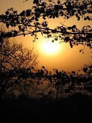 Sunrise at Haridwar (chatts) Tags: travel india train rail holy ganges haridwar indianrailways northindia footboard uttarakhandl