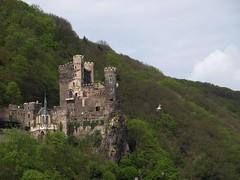 Rhine River Apr 08 072 (MurphMutt) Tags: castle germany rhineriver