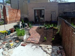 Tiny Garden in Process (maggie_and_her_camera) Tags: maggieneely