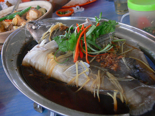Steam Patin Fish