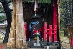 IMGP5625-14 (zunsanzunsan) Tags: 冬 歌舞伎 神社 酒田市 黒森 黒森日枝神社 黒森歌舞伎