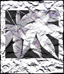 Acer (tina negus) Tags: effects maple digitalart acer specialeffects naturesque wowiekazowie circleofarts coolestphotographers fleetingflora zenenlightenmentgroup artevokesemotion