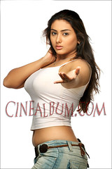 Namitha_100 (Amazing Album !) Tags: cute actress beautifull kollywood tollywood namitha mollywood tamilactress southindianactress
