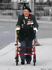 Canadian Veteran (ViaMoi) Tags: canada art digital photoshop army remember ottawa rcmp warmemorial veteransday rcaf remembering memorialservice november11 viamoi