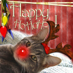 MERRY CHRISTMAS!!! (dora_marie) Tags: santa christmas light red pet cats pets canada digital cat scrapbooking reindeer nose lights chats chat holidays catholic fiesta quebec 2006 christian invitation rudolf merry fte nol merrychristmas protestant fiest helper feliznavidad digitalscrapbooking ftes joyeuxnol kissablekat pet500 theunforgettablepictures