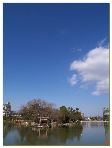 Today's Photo 080109 #04