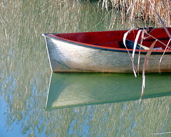 Barchetta al lago (nikiold) Tags: lake lago countryside boat country campagna wwf barchetta