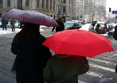 Umbrellas (Ann Althouse) Tags: umbrellas
