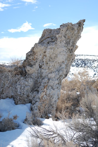 It's one for the Mono, tufa the snow