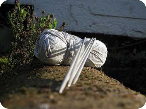spirogyra yarn 'n neddles