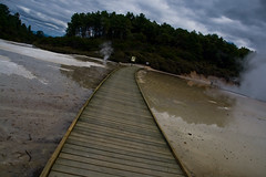 They were all taken by the mist (c@rljones) Tags: newzealand rotorua footbridge steam craters colourful geothermal waiotapu thermalwonderland belial april2008 volanic status:move=0 httpwwwrljonescouk