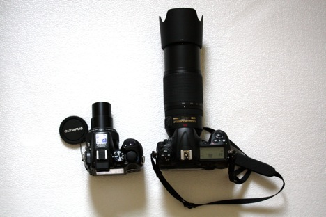 Olympus SP-570UZ and the Nikon D300 plus Nikkor 70-300mm VR lens (with the lens hood on) side-by-side IMG_0269.JPG